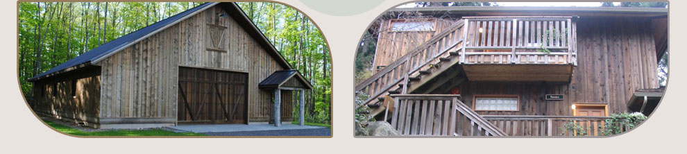 Lifetime 174 Wood Treatment Non Toxic Wood Stain